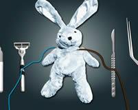 Worksheet. Juegos de Conejos