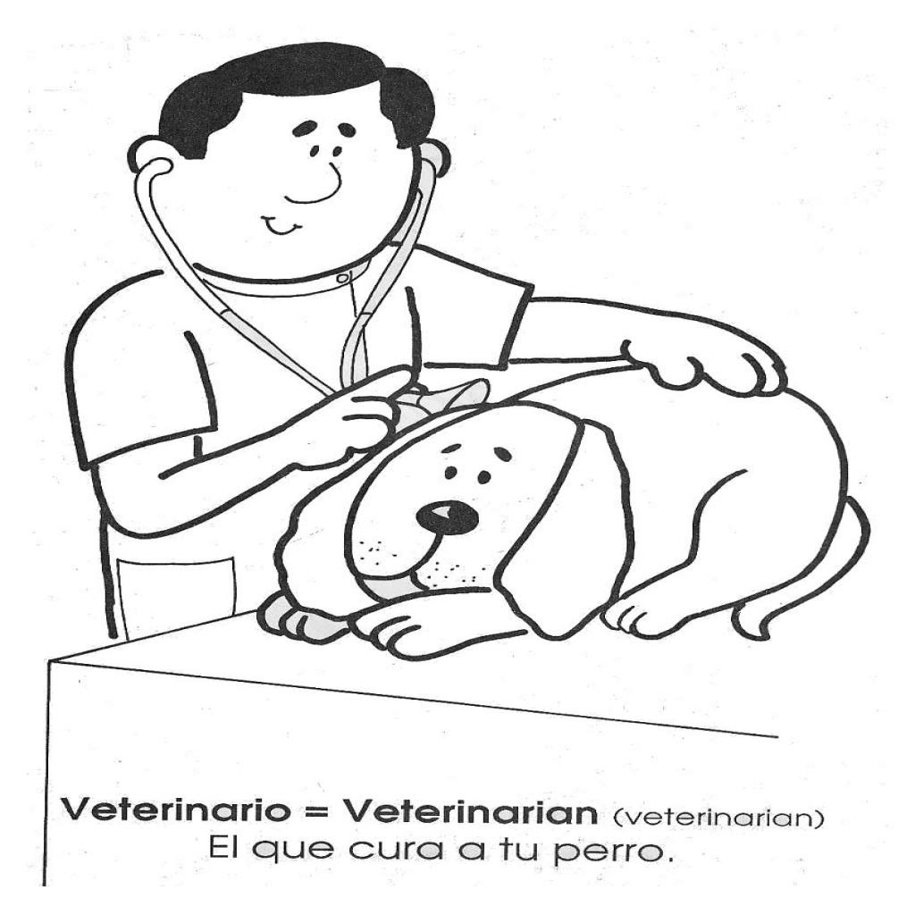 Dibujos Para Colorear Veterinario Animales