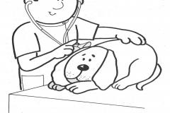 veterinarios para colorear rayito de colores