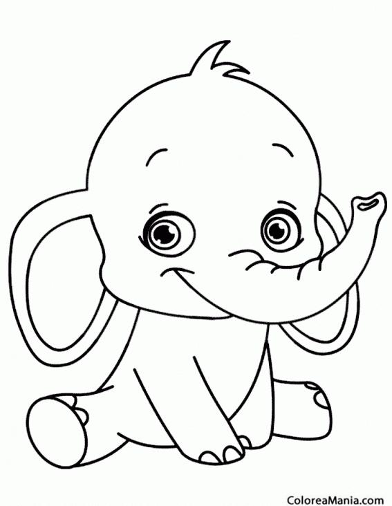 Image Of Dibujos Para Colorear De Elefantes Gratis Un Elefante