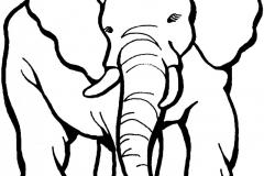 elefantes-para-colorear-01