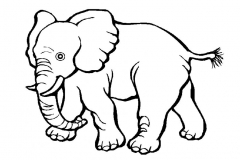 elefantes-para-colorear-03