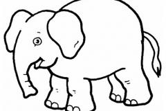 elefantes-para-colorear-04