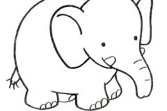 elefantes-para-colorear-12
