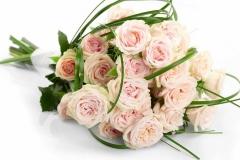 flores-bellas-03