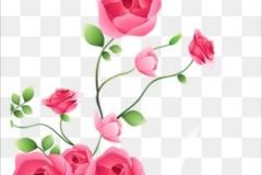 flores-bellas-08