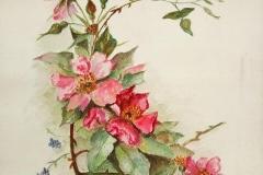 flores-bellas-11
