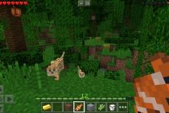 minecraft-online-06
