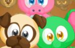 Alimentar mascotas